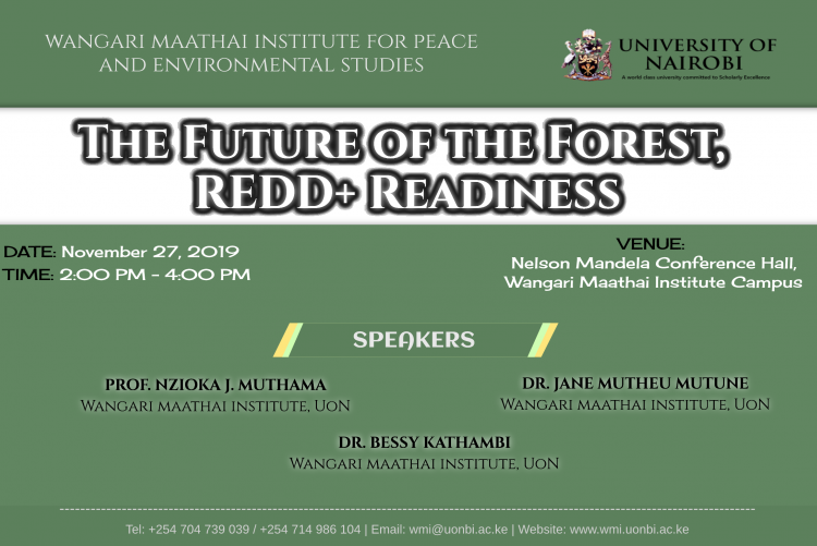 The Future of The Forest, REDD+ Readiness