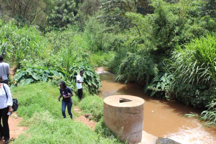 Wangari Maathai Institute for Peace and Environmental Studies experiential learning